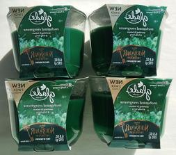 4 GLADE ENCHANTED EVERGREEN  SPARKLING FIR & HOLLY BERRY 3 W