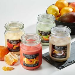 Tuscany / Candle-Lite Candle Scented Candles Large 18 oz Jar